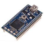ARM Embedded Platforms